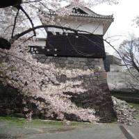 瓦礫と桜と城