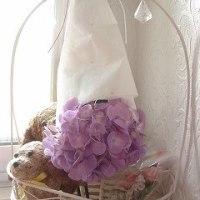 紫陽花の日