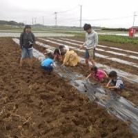 今月も無事終了!田んぼと畑の耕育教室