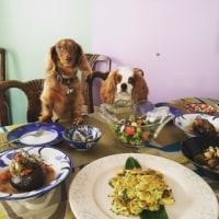 7月はトルコ料理です!
