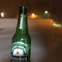 今日は雪見酒