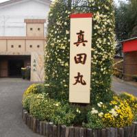 スポコミ・カワラ版 12月4日(日)仏滅