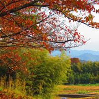 深まりゆく秋の里山