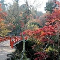 おはようございます 本日の予定です。http://astone.tv/tlcccitami/