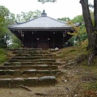 26日の散歩 ( 仁和寺往復で秋便り )