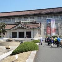 東京国立博物館の庭園開放