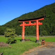 田んぼの中に佇む鳥居 ・ JR姫新線(兵庫県)