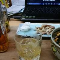 今日は休業日、手羽中で飲んでます。