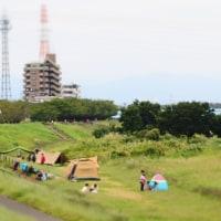 休日の多摩川散歩