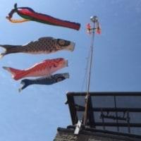 鯉のぼり空高く☆オーダーその2作業開始