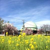 土壌汚染蘆花公園保育園の濾過