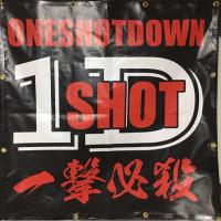 ONE SHOT DOWN (^o^)/