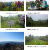 第39回 堺 登山・ハイキング同好会例会 大洞山 (2017年6月25日)