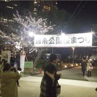 2017年 錦糸公園の桜 枝垂桜が満開