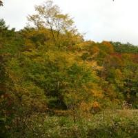 種山高原(10/20、紅葉と黄葉の前編)