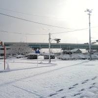 1月15日(日) 昨日と今日の大雪(愛知 北西部)