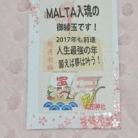 ♪MALTA♪2017.1.14