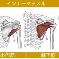 インナーマッスルとアウターマッスルの働き     金沢市   筋膜治療
