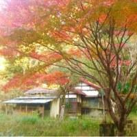 坂本九が、戦争中疎開して住んでいた家