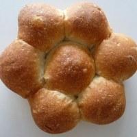 ビゴの店のパンたち♪