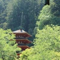 再び奈良へ その①