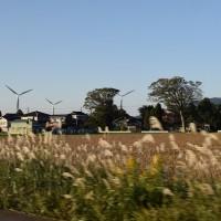 道の駅・風車市場
