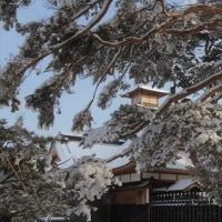 """""""雪の朝""""...五稜郭公園"""