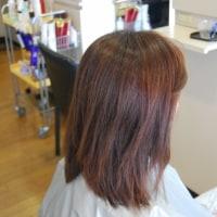 プログレスカラーは美髪効果が凄いですね。(^o^)(^o^)