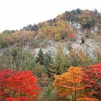 長野紅葉めぐり:高瀬渓谷の紅葉