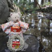 「下鴨神社」の「流しびな」。みたらし川に小さな雛を流し、浄める身と心の穢れ。