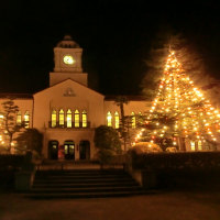 2016 関学 クリスマスツリー!