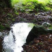 常陸太田は大沢の滝の探訪記