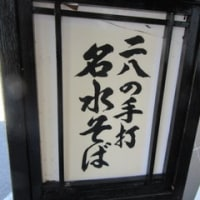 醤油カツ丼・おろしそばセット@梅林(大野)