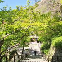 何度訪れても感動の長谷寺