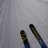 1月22日(日)の志賀高原詳細レポート…雪よし,天気よし,ガラガラの3拍子.ふはははは!最高!最高だよ!