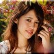 〔気まぐれ写真-67〕 滋賀県 函館山ゆり園