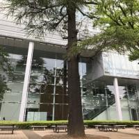 和泉キャンパスで、緑と風を感じました~♪