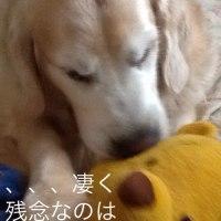 なんて こった〜〜!