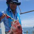 今日の真鯛釣り