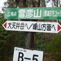 雪彦山(せっぴこさん)