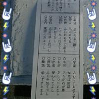 ゚・:*:・。♪☆A Happy New Year ゚・:*:・。♪☆