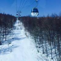 パルコール嬬恋スキー場のオープン日