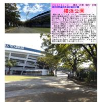 横浜-188 横浜公園