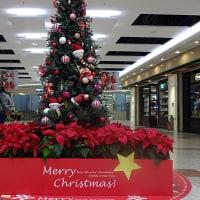 近づくクリスマス