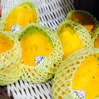 Papaya!! ٩(⑅•ᴗ• )( •ᴗ•⑅)۶