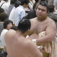 大相撲夏場所総括