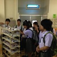中学部2年生「校外学習」