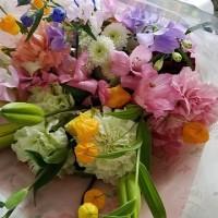 4月28日 明日の誕生花・ゆかりの花 花言葉は?(*^O^*)☆