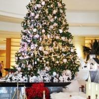 The Yokohama Bay Hotel Tokyuのクリスマスツリー・・・ 「大志満」で浦舟のお弁当を頂く