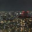 夜の新宿観光。